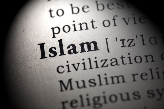 Are the words iman and Islam, and Mu'min (Believer) and Muslim the same or different in meaning?